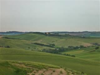 Foto - Terreno agricolo in Vendita a San Giovanni in Marignano