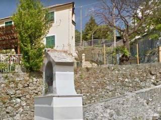 Foto - Terreno agricolo in Vendita a Genova