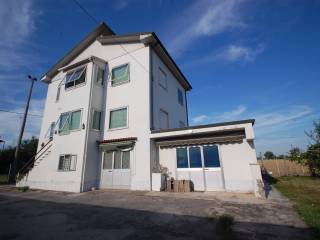 Foto - Casa indipendente 200 mq, da ristrutturare, Boara, Ferrara