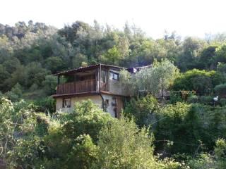 Foto - Rustico / Casale via Ponte, Fanghetto, Olivetta San Michele