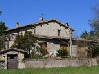 Foto - Rustico / Casale viale Dilio Rossi 56D, Castiglione In Teverina