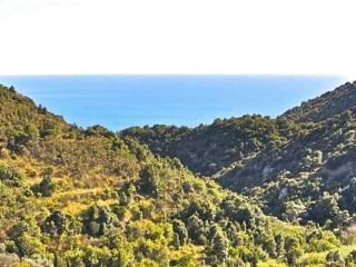 Foto - Casa indipendente 97 mq, buono stato, Monte Argentario