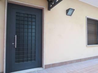 Immobile Affitto Piacenza