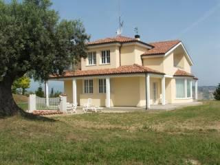 Foto - Villa via Colle Razzi, Cipressi, Citta' Sant'Angelo