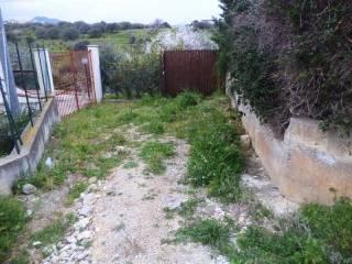 Foto - Terreno agricolo in Vendita a Casteldaccia