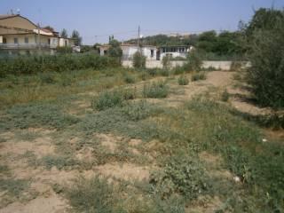 Foto - Terreno agricolo in Affitto a Quarto