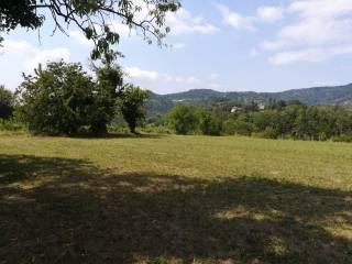 Foto - Terreno agricolo in Vendita a Moncalieri