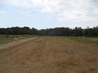 Foto - Terreno agricolo in Affitto a Collecorvino