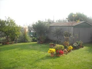 Foto - Casa indipendente 140 mq, buono stato, Casale Albericci, Montemarciano
