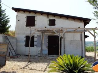 Foto - Villa Contrada Bosco Falconeria, -1, Partinico