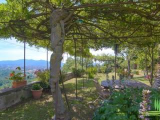 Foto - Villa, ottimo stato, 760 mq, Centro Storico, Lucca