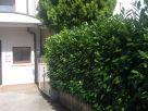 Appartamento Vendita Ponzano Veneto