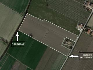 Foto - Terreno agricolo in Vendita a Lugo