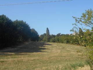 Foto - Terreno agricolo in Vendita a Cupramontana