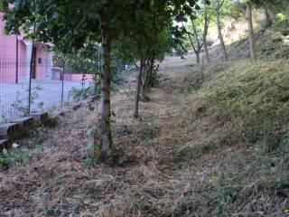 Foto - Terreno edificabile residenziale a Lanusei