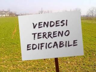 Foto - Terreno edificabile residenziale a Arquà Polesine