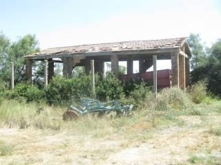 Foto - Rustico / Casale, da ristrutturare, 400 mq, Poggio San Marcello