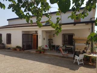 Foto - Villa Contrada Brunetta, Vigne, Castrovillari