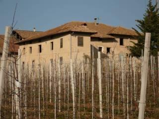 Foto - Rustico / Casale frazione Casez 9, Casez, Sanzeno