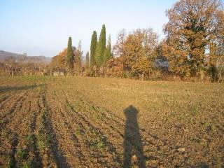 Foto - Terreno edificabile residenziale a Lucignano