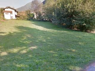 Foto - Terreno agricolo in Vendita a Colico