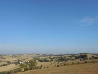 Foto - Terreno agricolo in Vendita a Jesi