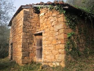Foto - Rustico / Casale, da ristrutturare, 4540 mq, Isolabona