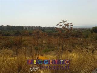 Foto - Terreno agricolo in Vendita a Catania