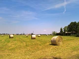 Foto - Terreno agricolo in Vendita a Reggio Emilia