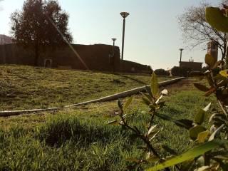 Foto - Terreno edificabile residenziale a Roma