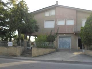 Foto - Quadrilocale via San Pellegrino, Trecastelli