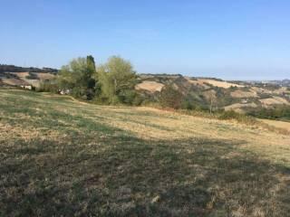 Foto - Terreno agricolo in Vendita a Cesena