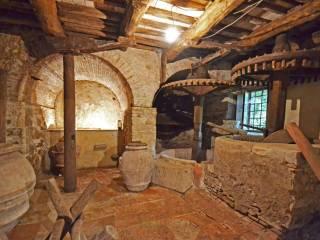 Foto - Rustico / Casale, da ristrutturare, 150 mq, Orbicciano, Camaiore