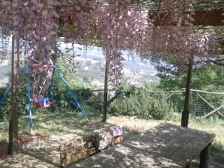 Foto - Terreno edificabile residenziale a Castiglione in Teverina