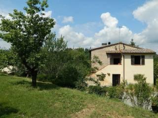 Foto - Rustico / Casale via Toppo Basso, Macciano, Chiusi
