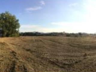Foto - Terreno agricolo in Vendita a Pistoia