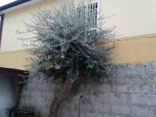Foto - Bilocale via Bari 3, Recale