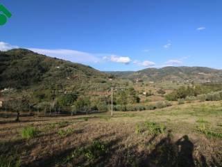 Foto - Terreno agricolo in Vendita a Pescia
