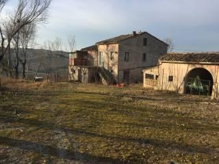 Foto - Rustico / Casale Contrada San Tommaso, Montegranaro