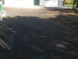 Foto - Rustico / Casale Contrada Palmo, Francavilla Fontana