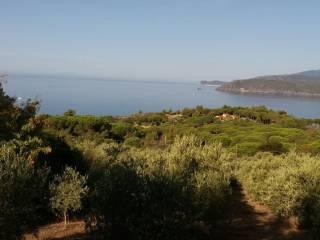 Foto - Terreno agricolo in Vendita a Capoliveri