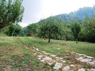 Foto - Terreno agricolo in Vendita a Botticino