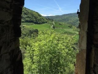 Foto - Rustico / Casale regione Blengi Superiore, Pezzolo Valle Uzzone