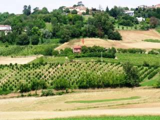 Foto - Casa indipendente 750 mq, buono stato, Moncalvo