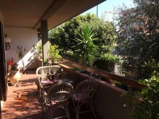 Foto - Appartamento buono stato, piano rialzato, Cittadella, Grosseto