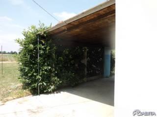 Foto - Villa, buono stato, 100 mq, Gazzola