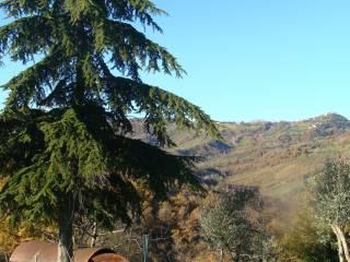 Foto - Villa, buono stato, 115 mq, Sogliano al Rubicone