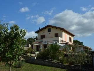 Photo - Single family villa via Vecchi Prati di Mainello 13, Zagarolo