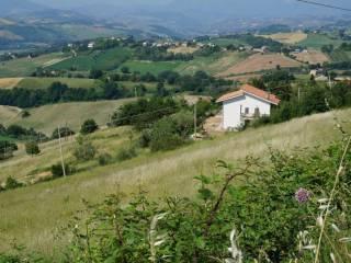 Foto - Rustico / Casale, buono stato, 300 mq, Monterubbiano