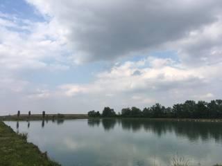 Foto - Terreno agricolo in Vendita a Parma